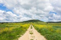 Greek landscape Royalty Free Stock Images