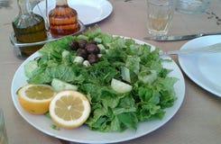 Greek Marouli lettuce salad. Greek salad. Marouli. Lettuce with cucumber, spring onions, olives, fresh dill.  Lemon wedges on side.  Olive oil and vinegar Stock Photography