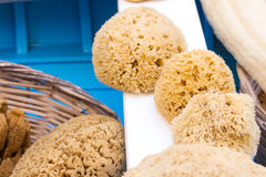 Greek natural yellow sponge on the market Royalty Free Stock Photography