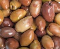 Greek olives preserved Royalty Free Stock Images