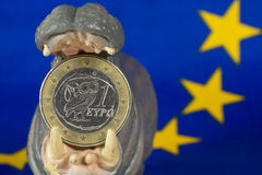 Greek one euro coin in mouth of hippo figurine Royalty Free Stock Photo