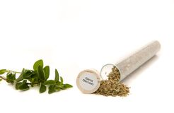 Greek Oregano Royalty Free Stock Photos