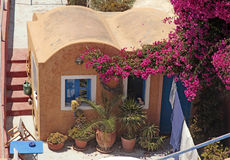 Greek red building with patio and flowers, Santorini island, Gr Royalty Free Stock Photo