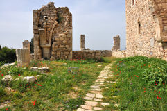 Greek ruins and excavations on samos Stock Images