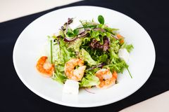 Greek salad with shrimp Stock Photography