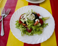 Greek salad. The Greek salad on a red-yellow cloth Stock Image