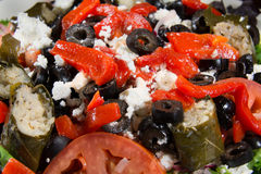 Greek Salad with Stuffed Grape Leaves Closeup Royalty Free Stock Photography