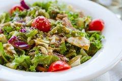 Greek salad with tomatoes herbs and rusks Royalty Free Stock Photo