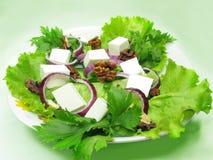 Greek Salad With Walnut Royalty Free Stock Image
