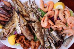 Greek seafood plate Royalty Free Stock Images