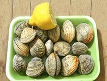 Greek seafood shellfish from Aegean sea Royalty Free Stock Image