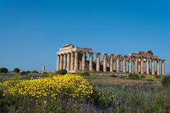 Free Greek Temple Royalty Free Stock Photos - 24032908