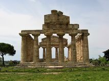 Greek temple of Athena to spring in the archaeological park of Paestum in Italy. stock photography