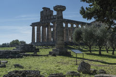 Greek Temple of Ceres, Paestum, Cilento Italy Stock Photos