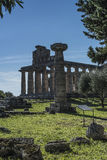 Greek Temple of Ceres, Paestum, Cilento Italy stock photography