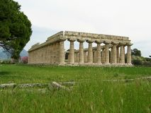 Greek ancient temple of Hera to spring in Paestum. Italy. Greek temple of Hera to spring in Paestum, Italy. Travel destination. Tall grass field. Green field Royalty Free Stock Photography