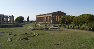 Greek temple paestum Stock Images