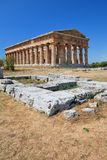 Greek Temple in Paestum in Italy Stock Photos