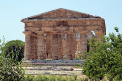 Greek temple in Paestum, Italy Royalty Free Stock Photos