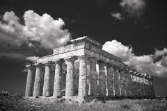 Greek temple in Selinunte Royalty Free Stock Images
