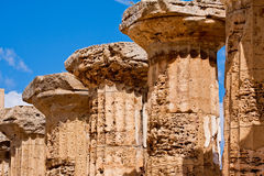 Greek temple in Selinunte Royalty Free Stock Photo
