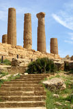 greek temple - sicily Royalty Free Stock Photo