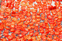 Greek tomatoes dried in the sun Stock Photo