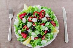 Greek vegetable salad Stock Images