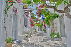 Greek Village Street. Quiet, shady village street on a greek island in the Cyclades Group with flowering bougainvillea Stock Photo