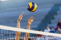 Greek Women Volleyball League game Aias vs Panathinaikos Stock Image