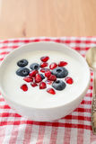 Greek yogurt with blueberries and pomegranate Royalty Free Stock Photo