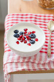 Greek yogurt with blueberries and pomegranate Royalty Free Stock Photos