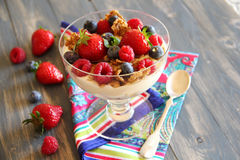 Greek yogurt with cereal,fresh fruits and honey Stock Images