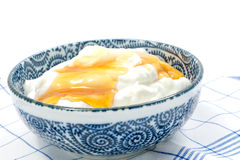 Greek yogurt with honey in a pot Royalty Free Stock Image