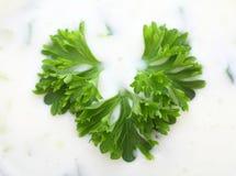 Greek yogurt with parsley Stock Photography
