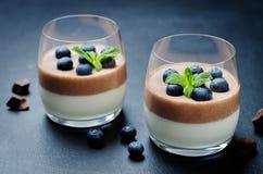 Greek yogurt vanilla chocolate panna cotta with mint leaves and fresh blueberries. Toning. Selective focus stock photos