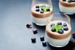 Greek yogurt vanilla chocolate panna cotta with mint leaves and fresh blueberries. Toning. Selective focus stock photo
