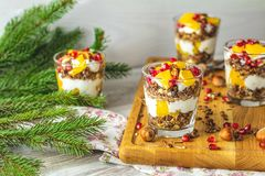 Free Greek Yogurt With Granola, Orange And Pomegranate Berries For Healthy Breakfast On Light Gray Wooden Table Stock Images - 162869284