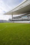 Greem Grass and The Stadium. Empty Olympic Stadium and green grass soccer field Royalty Free Stock Image