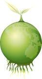 green, Zdjęcie Royalty Free