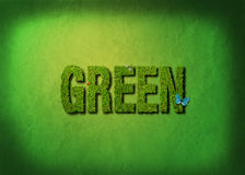 Green Royalty Free Stock Image
