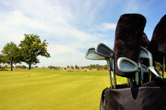 At the green. Golf bag with clubs at the green Stock Image
