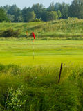 The Green. Golf course Green with a red flag Stock Images