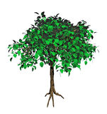 Green 3d tree Stock Image