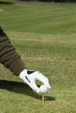 In the Green. Hand putting a golf ball in a tee Royalty Free Stock Photos