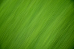 Green abstract background. With diagonal streaks Stock Image