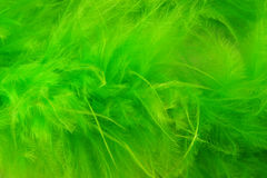 Green abstract background. Close of a green abstract background Stock Images