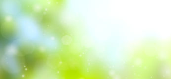 Green abstract background blur. Royalty Free Stock Image