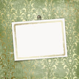 Green abstract background with card Royalty Free Stock Image