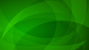 Green abstract background. Abstract background of curved lines in green colors vector illustration